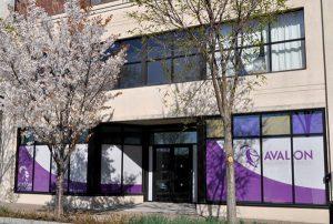 Buffalo Avalon office